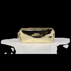 Kosmetyczka o wzorze skóry krokodyla złota mała (R24393) icon
